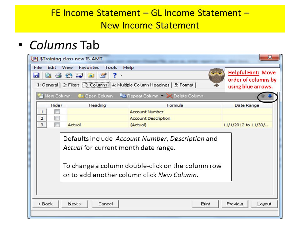 FE Income Statement – GL Income Statement – New Income Statement Columns Tab Defaults include Account Number, Description and Actual for current month date range.