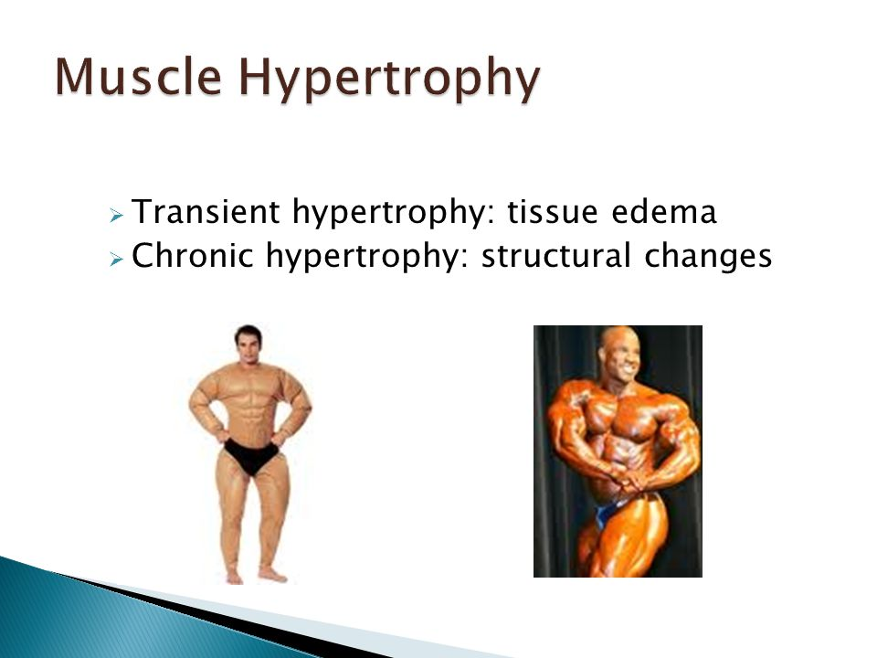  Transient hypertrophy: tissue edema  Chronic hypertrophy: structural changes