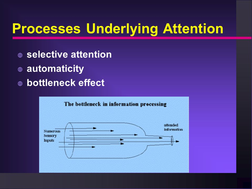 Processes Underlying Attention  selective attention  automaticity  bottleneck effect