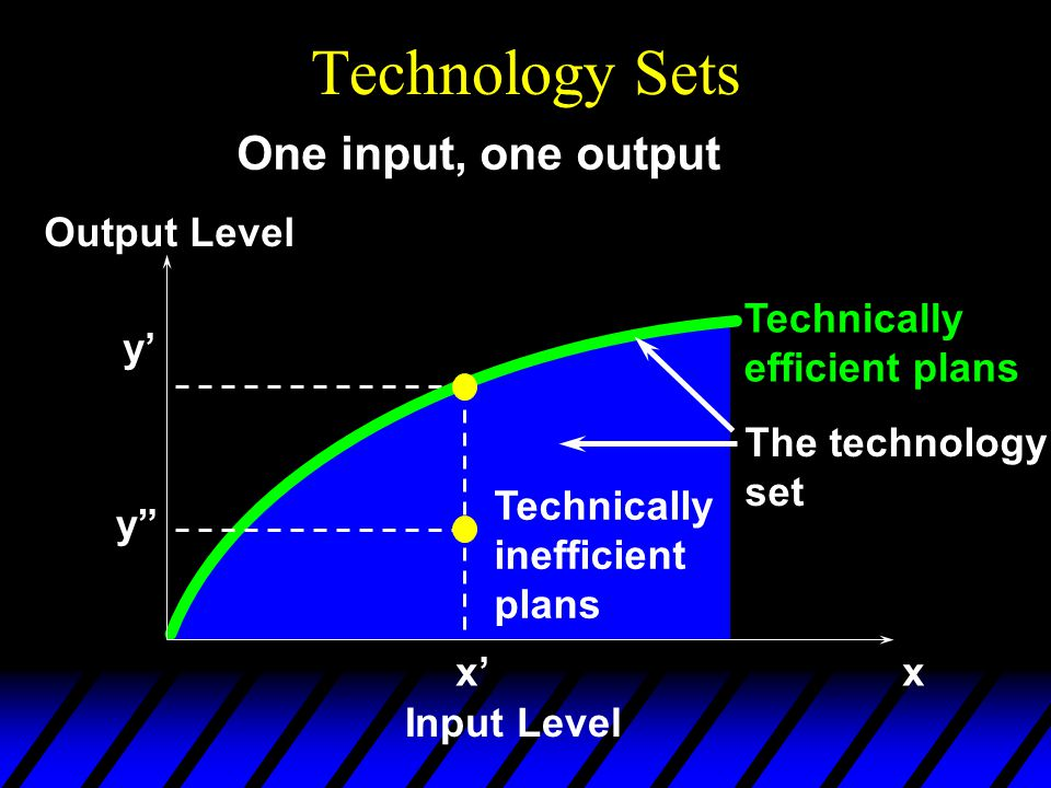 Technology Sets x'x Input Level Output Level y' One input, one output y The technology set Technically inefficient plans Technically efficient plans