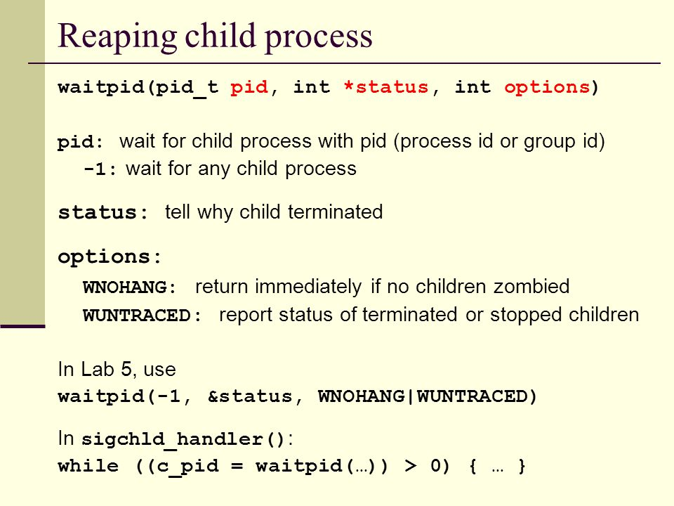 Reaping child process waitpid(pid_t pid, int *status, int options) pid: wait for child process with pid (process id or group id) -1: wait for any child process status: tell why child terminated options: WNOHANG: return immediately if no children zombied WUNTRACED: report status of terminated or stopped children In Lab 5, use waitpid(-1, &status, WNOHANG|WUNTRACED) In sigchld_handler() : while ((c_pid = waitpid(…)) > 0) { … }