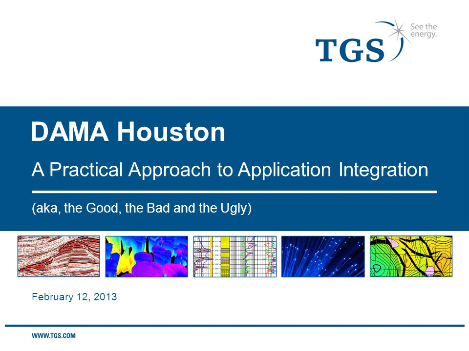 DAMA Houston (aka, the Good, the Bad and the Ugly) A Practical Approach to Application Integration February 12, 2013