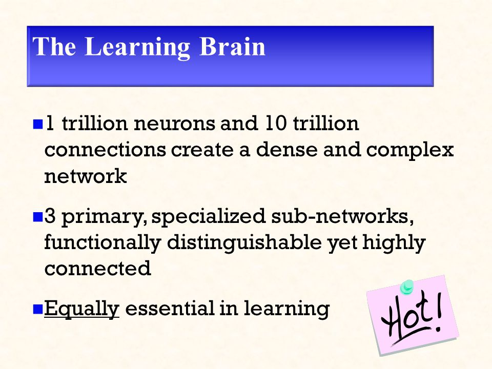 The Learning Brain 1 trillion neurons and 10 trillion connections create a dense and complex network 3 primary, specialized sub-networks, functionally distinguishable yet highly connected Equally essential in learning