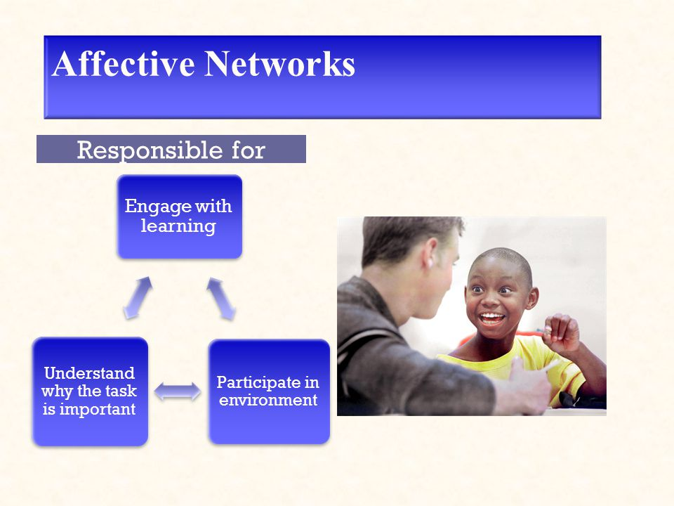 Affective Networks Engage with learning Participate in environment Understand why the task is important Responsible for
