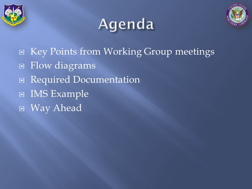  Key Points from Working Group meetings  Flow diagrams  Required Documentation  IMS Example  Way Ahead
