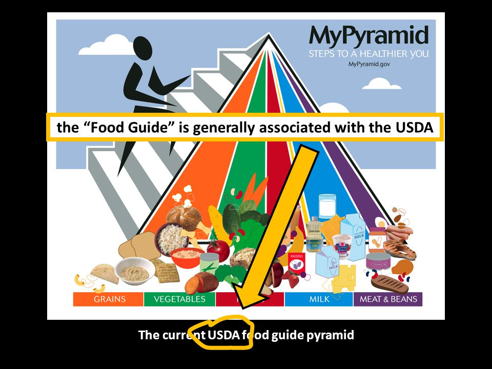 The current USDA food guide pyramid the Food Guide is generally associated with the USDA