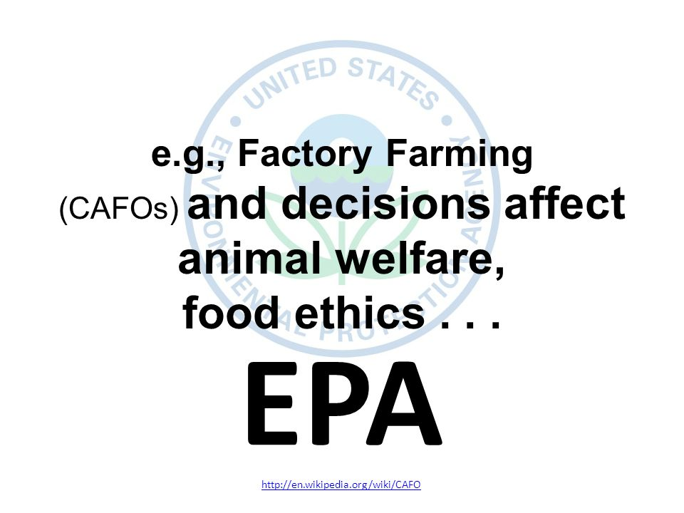 http://en.wikipedia.org/wiki/CAFO e.g., Factory Farming (CAFOs) and decisions affect animal welfare, food ethics...