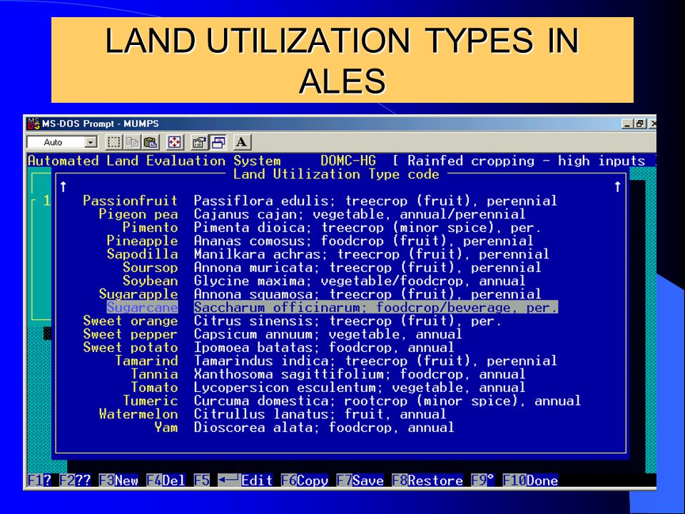 18 LAND UTILIZATION TYPES IN ALES