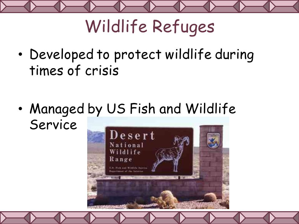 Wildlife Refuges Developed to protect wildlife during times of crisis Managed by US Fish and Wildlife Service