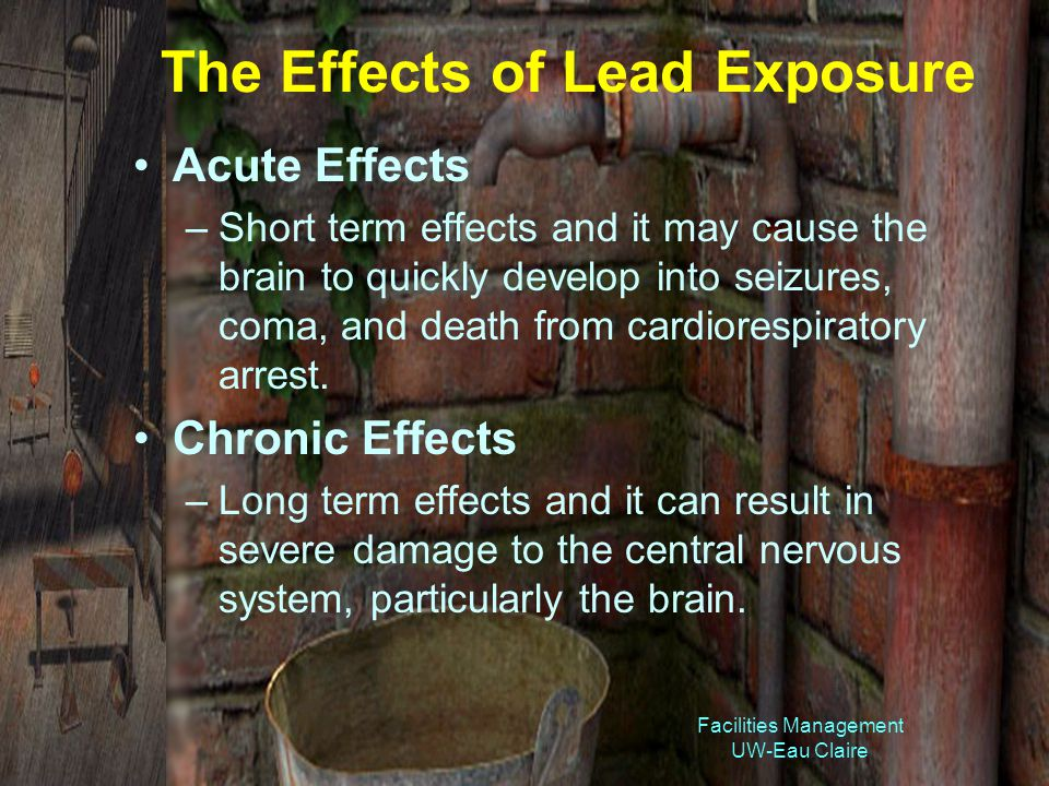 Facilities Management UW-Eau Claire The Effects of Lead Exposure Acute Effects –Short term effects and it may cause the brain to quickly develop into seizures, coma, and death from cardiorespiratory arrest.
