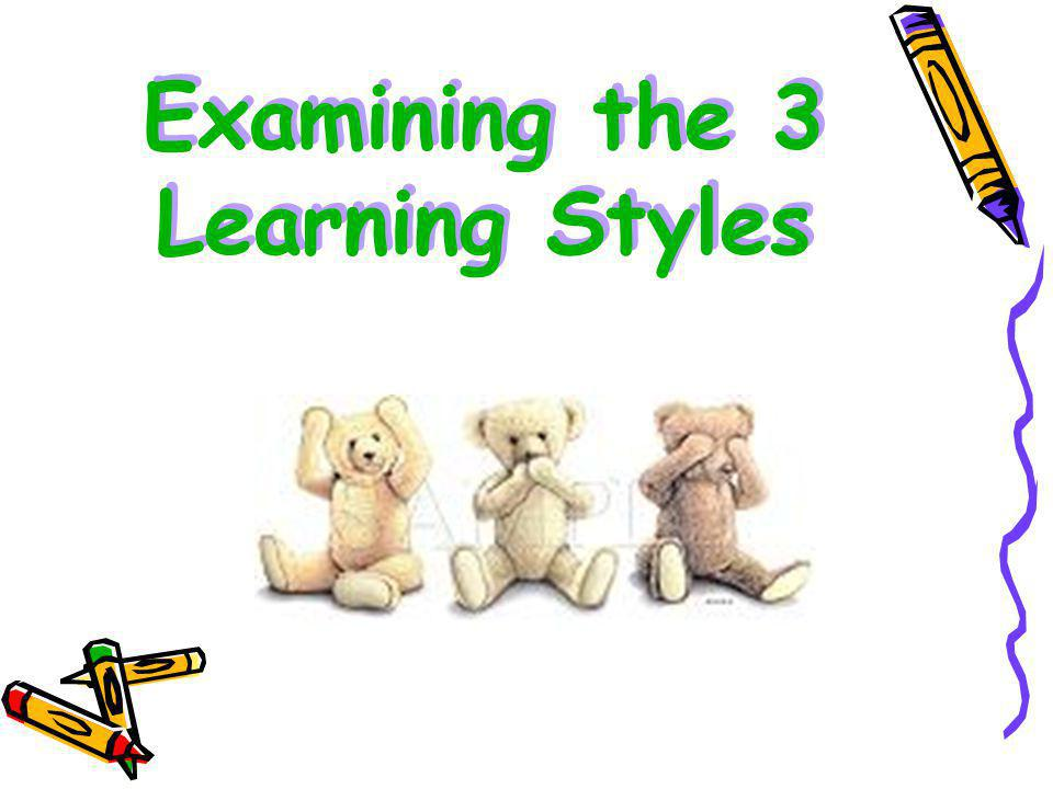 Examining the 3 Learning Styles
