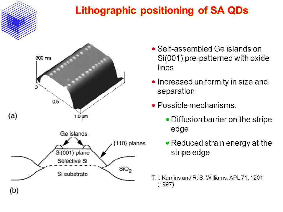 Lithographic positioning of SA QDs  Self-assembled Ge islands on Si(001) pre-patterned with oxide lines  Increased uniformity in size and separation  Possible mechanisms:  Diffusion barrier on the stripe edge  Reduced strain energy at the stripe edge T.