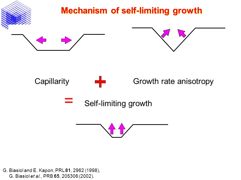 Mechanism of self-limiting growth CapillarityGrowth rate anisotropy = Self-limiting growth G.