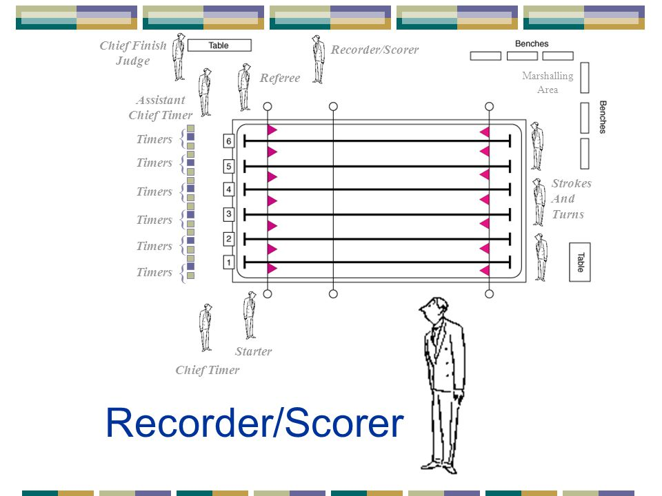 Recorder/Scorer Referee Starter Chief Timer Assistant Chief Timer { { { { { { Timers Strokes And Turns Marshalling Area Chief Finish Judge Recorder/Scorer