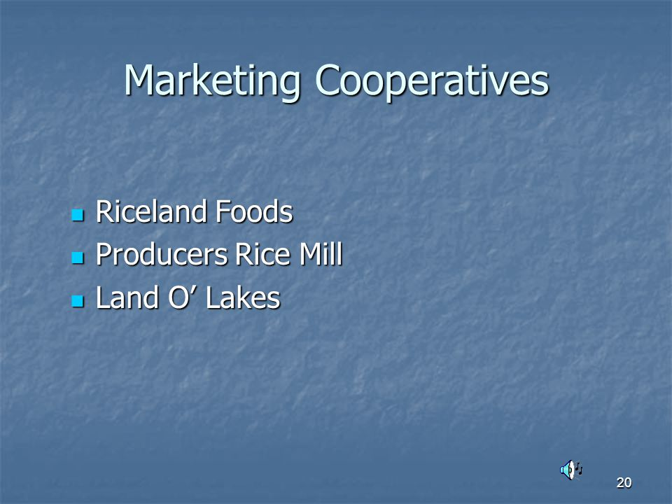 20 Marketing Cooperatives Riceland Foods Riceland Foods Producers Rice Mill Producers Rice Mill Land O' Lakes Land O' Lakes