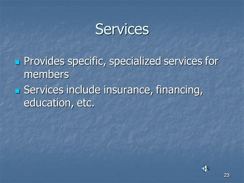 23 Services Provides specific, specialized services for members Provides specific, specialized services for members Services include insurance, financing, education, etc.