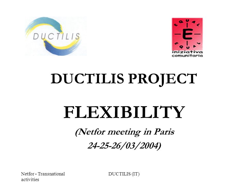 Netfor - Transnational activities DUCTILIS (IT) DUCTILIS PROJECT FLEXIBILITY (Netfor meeting in Paris 24-25-26/03/2004)
