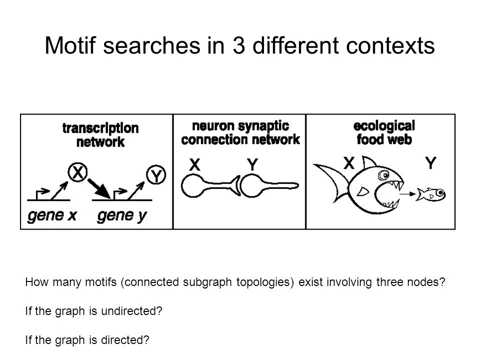 Motif searches in 3 different contexts How many motifs (connected subgraph topologies) exist involving three nodes.