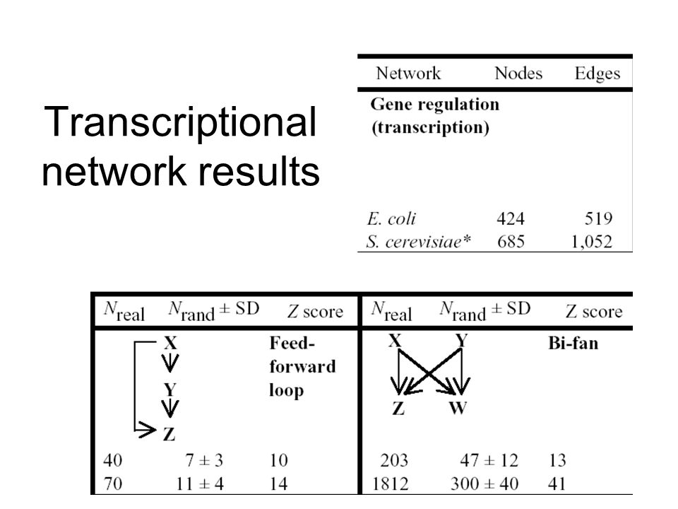 Transcriptional network results