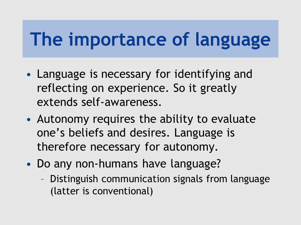 The importance of language Language is necessary for identifying and reflecting on experience.