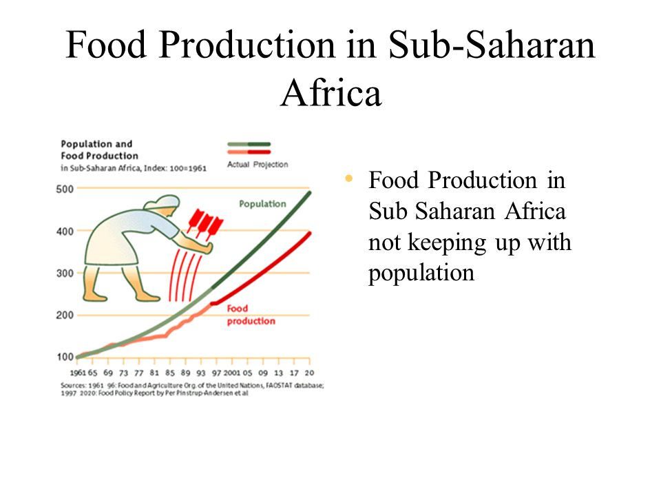 Food Production in Sub-Saharan Africa Food Production in Sub Saharan Africa not keeping up with population