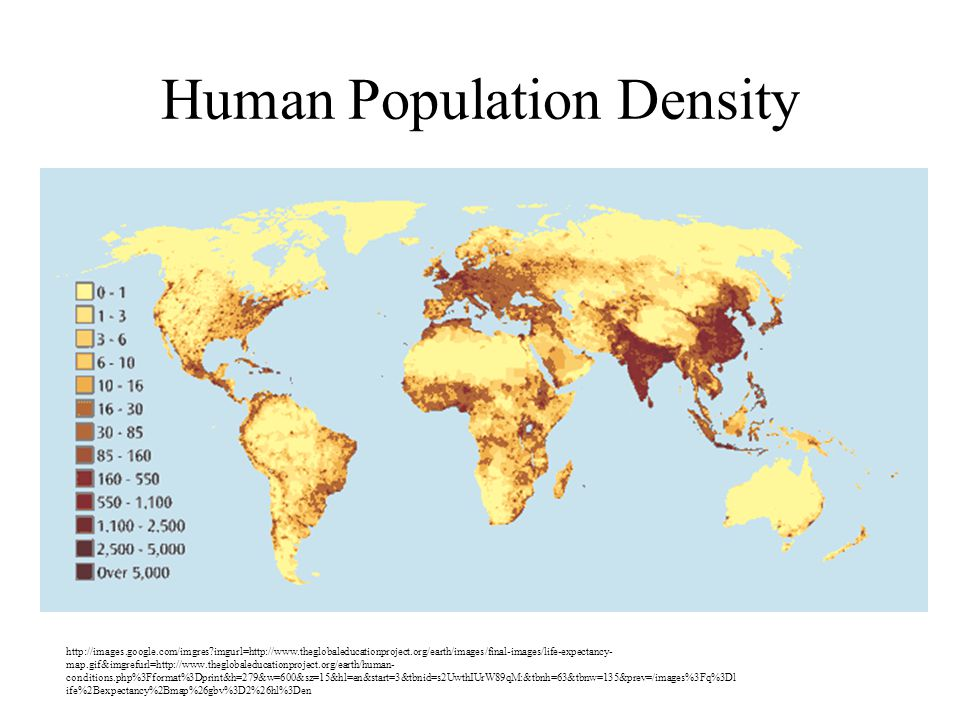 Human Population Density http://images.google.com/imgres imgurl=http://www.theglobaleducationproject.org/earth/images/final-images/life-expectancy- map.gif&imgrefurl=http://www.theglobaleducationproject.org/earth/human- conditions.php%3Fformat%3Dprint&h=279&w=600&sz=15&hl=en&start=3&tbnid=s2UwthIUrW89qM:&tbnh=63&tbnw=135&prev=/images%3Fq%3Dl ife%2Bexpectancy%2Bmap%26gbv%3D2%26hl%3Den