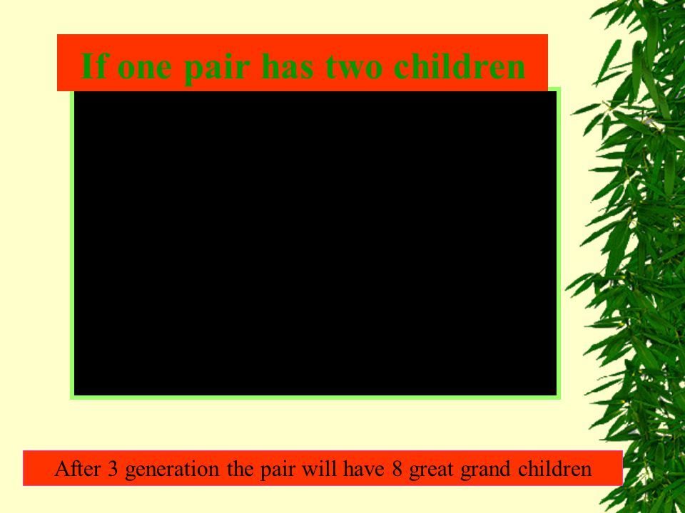 After 3 generation the pair will have 8 great grand children If one pair has two children