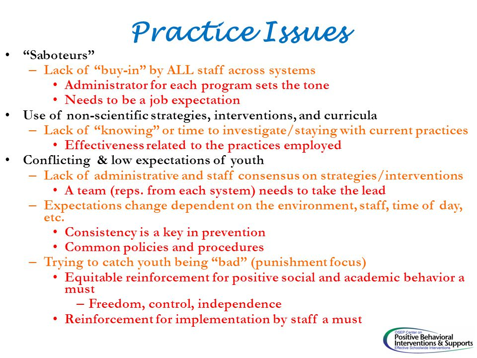 Practice Issues Saboteurs – Lack of buy-in by ALL staff across systems Administrator for each program sets the tone Needs to be a job expectation Use of non-scientific strategies, interventions, and curricula – Lack of knowing or time to investigate/staying with current practices Effectiveness related to the practices employed Conflicting & low expectations of youth – Lack of administrative and staff consensus on strategies/interventions A team (reps.