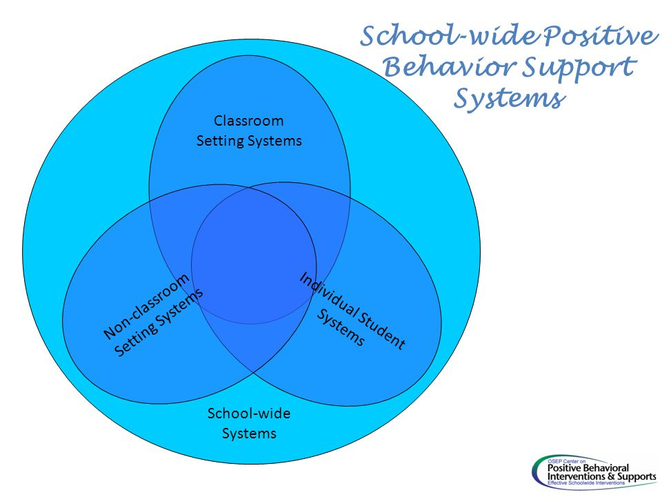 Non-classroom Setting Systems Classroom Setting Systems Individual Student Systems School-wide Systems School-wide Positive Behavior Support Systems