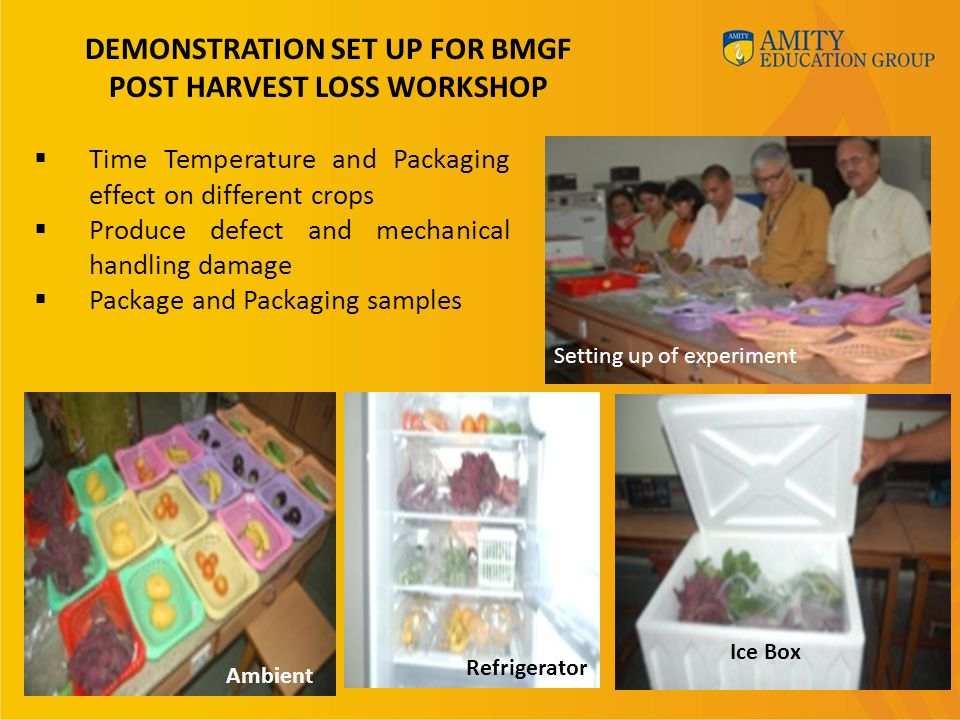 DEMONSTRATION SET UP FOR BMGF POST HARVEST LOSS WORKSHOP  Time Temperature and Packaging effect on different crops  Produce defect and mechanical handling damage  Package and Packaging samples Setting up of experiment Ambient Refrigerator Ice Box