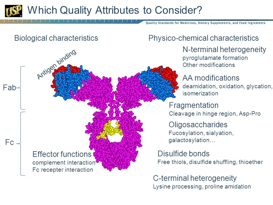 Which Quality Attributes to Consider.