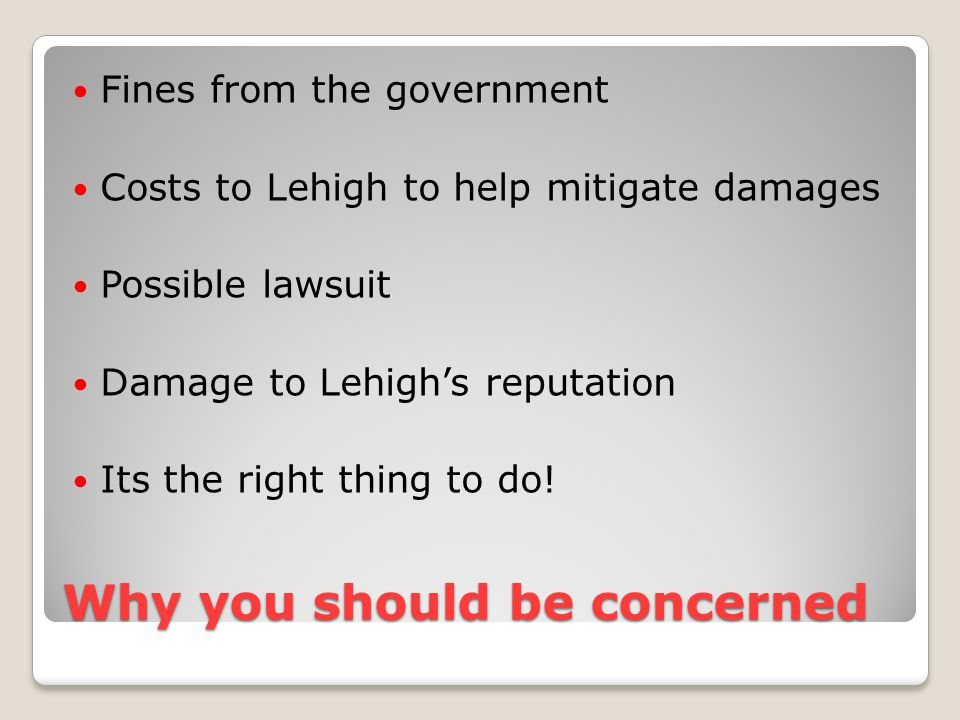 Why you should be concerned Fines from the government Costs to Lehigh to help mitigate damages Possible lawsuit Damage to Lehigh's reputation Its the right thing to do!