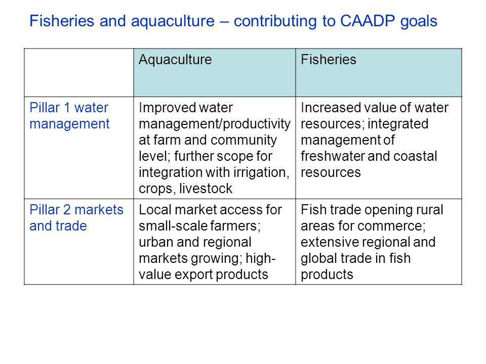 Fisheries and aquaculture – contributing to CAADP goals AquacultureFisheries Pillar 1 water management Improved water management/productivity at farm and community level; further scope for integration with irrigation, crops, livestock Increased value of water resources; integrated management of freshwater and coastal resources Pillar 2 markets and trade Local market access for small-scale farmers; urban and regional markets growing; high- value export products Fish trade opening rural areas for commerce; extensive regional and global trade in fish products