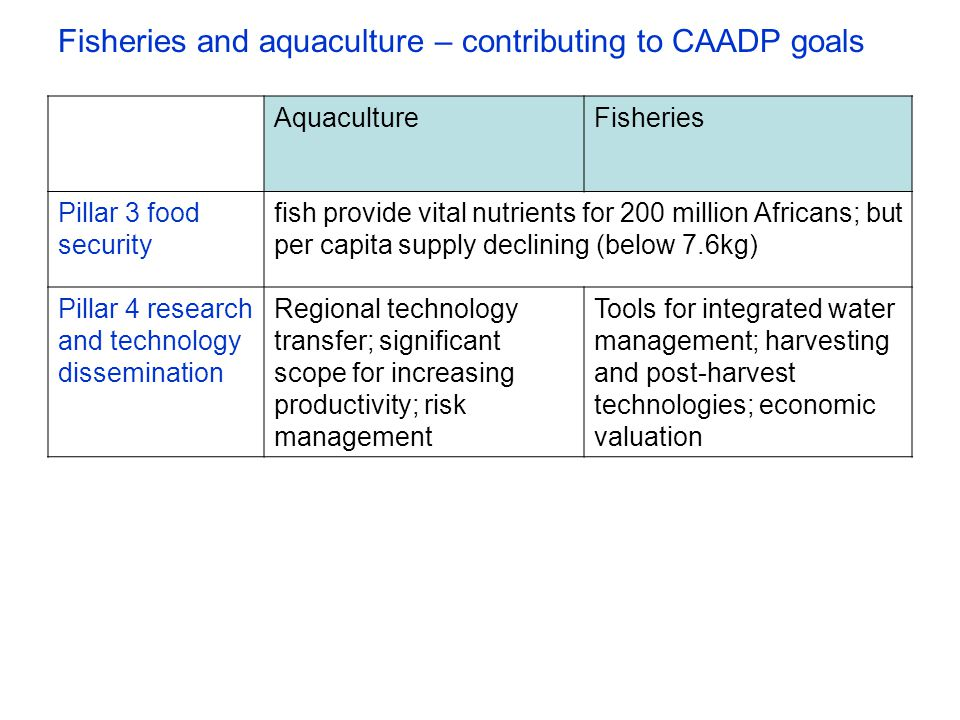 Fisheries and aquaculture – contributing to CAADP goals AquacultureFisheries Pillar 3 food security fish provide vital nutrients for 200 million Africans; but per capita supply declining (below 7.6kg) Pillar 4 research and technology dissemination Regional technology transfer; significant scope for increasing productivity; risk management Tools for integrated water management; harvesting and post-harvest technologies; economic valuation