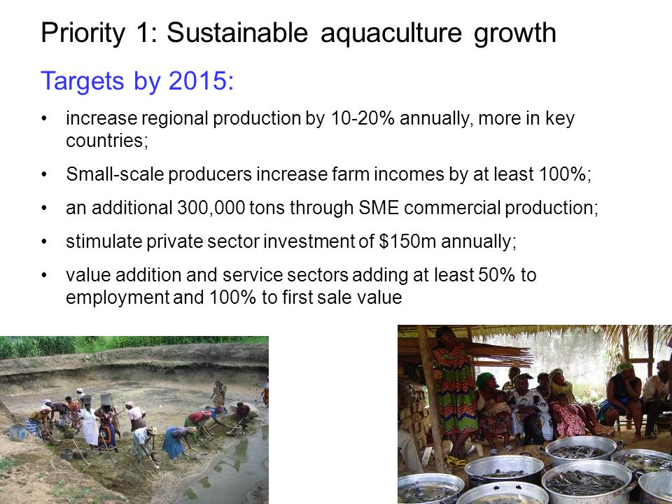Priority 1: Sustainable aquaculture growth Targets by 2015: increase regional production by 10-20% annually, more in key countries; Small-scale producers increase farm incomes by at least 100%; an additional 300,000 tons through SME commercial production; stimulate private sector investment of $150m annually; value addition and service sectors adding at least 50% to employment and 100% to first sale value