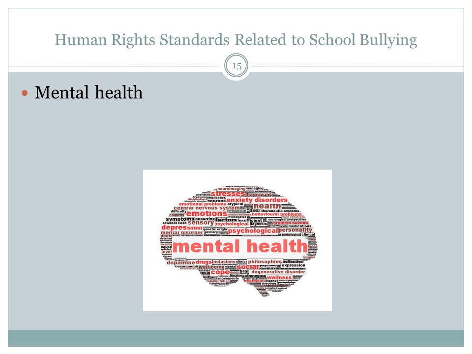 Human Rights Standards Related to School Bullying Mental health 15