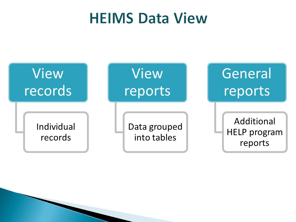 View records Individual records View reports Data grouped into tables General reports Additional HELP program reports