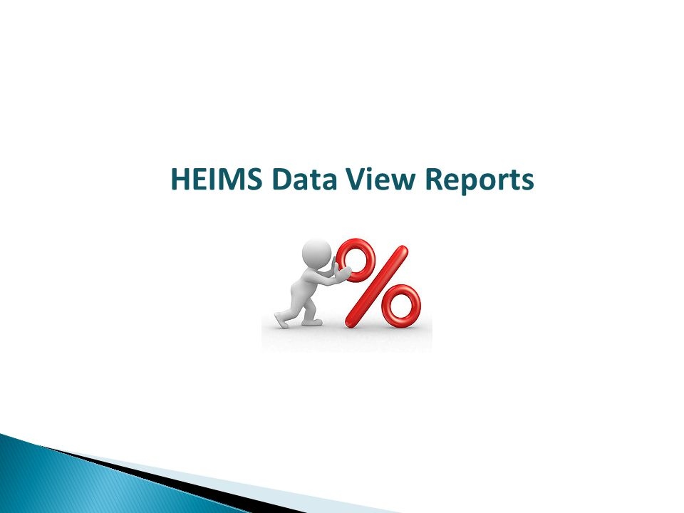 HEIMS Data View Reports