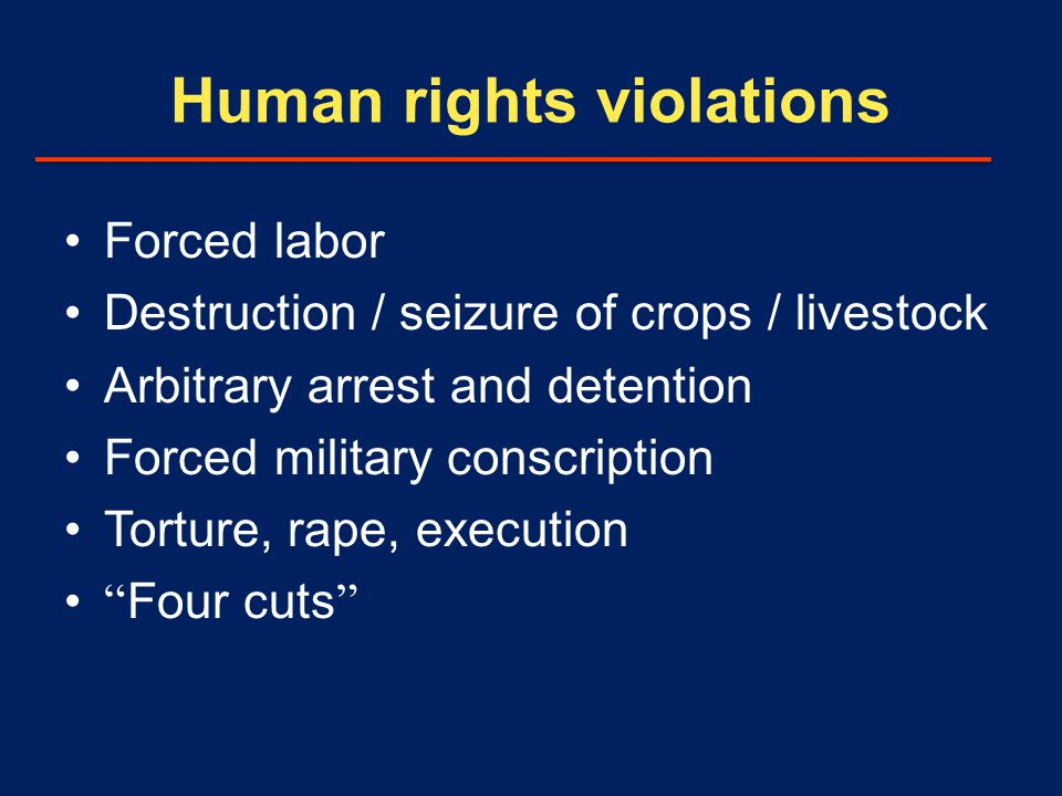 Human rights violations Forced labor Destruction / seizure of crops / livestock Arbitrary arrest and detention Forced military conscription Torture, rape, execution Four cuts