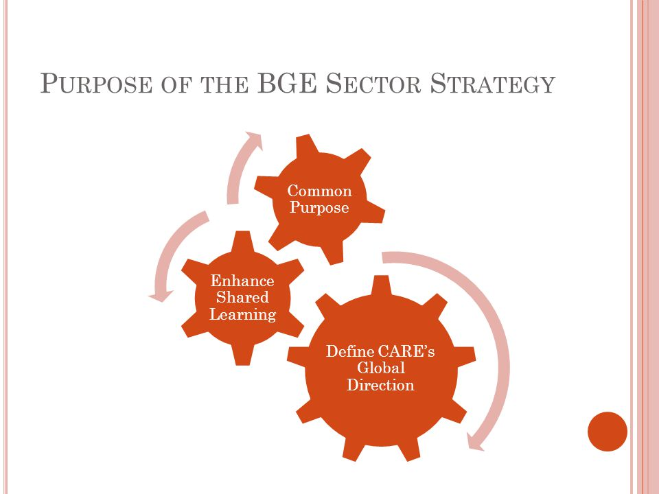 P URPOSE OF THE BGE S ECTOR S TRATEGY Define CARE's Global Direction Enhance Shared Learning Common Purpose