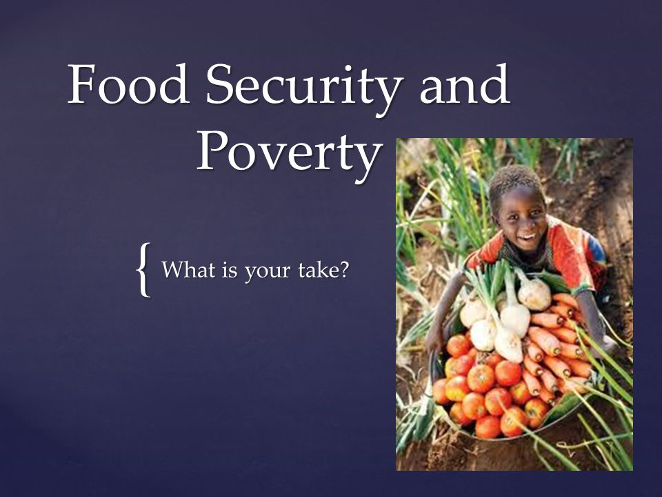 { Food Security and Poverty What is your take