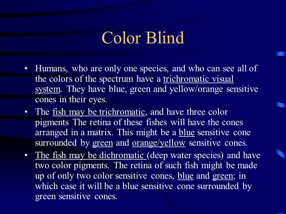 Color Blind Humans, who are only one species, and who can see all of the colors of the spectrum have a trichromatic visual system.