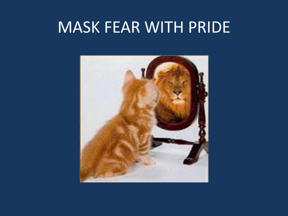 MASK FEAR WITH PRIDE
