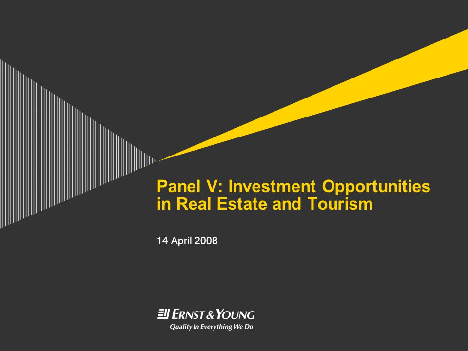 Panel V: Investment Opportunities in Real Estate and Tourism 14 April 2008