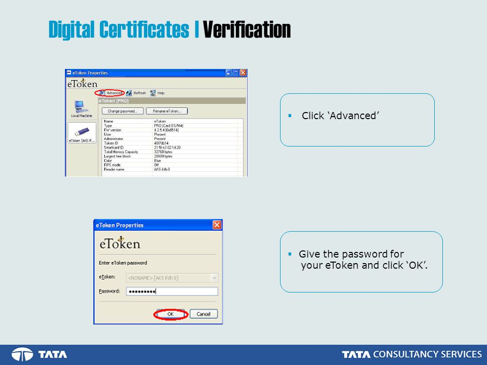  Click 'Advanced'  Give the password for your eToken and click 'OK'.