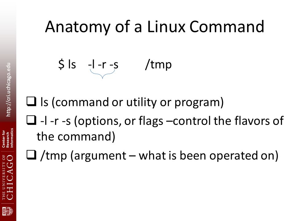 http://cri.uchicago.edu Anatomy of a Linux Command $ ls -l -r -s /tmp  ls (command or utility or program)  -l -r -s (options, or flags –control the flavors of the command)  /tmp (argument – what is been operated on)