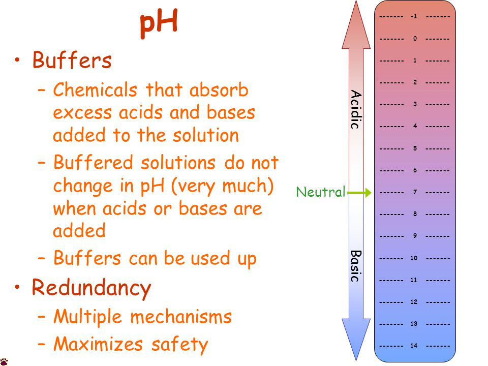 pH Buffers –Chemicals that absorb excess acids and bases added to the solution –Buffered solutions do not change in pH (very much) when acids or bases are added –Buffers can be used up Redundancy –Multiple mechanisms –Maximizes safety ------- -1 ------- ------- 0 ------- ------- 1 ------- ------- 2 ------- ------- 3 ------- ------- 4 ------- ------- 5 ------- ------- 6 ------- ------- 7 ------- ------- 8 ------- ------- 9 ------- ------- 10 ------- ------- 11 ------- ------- 12 ------- ------- 13 ------- ------- 14 ------- Acidic Basic Neutral