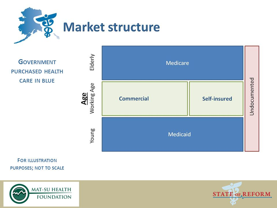 G OVERNMENT PURCHASED HEALTH CARE IN BLUE F OR ILLUSTRATION PURPOSES ; NOT TO SCALE