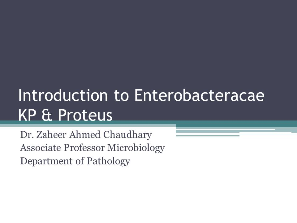 Introduction to Enterobacteracae KP & Proteus Dr.