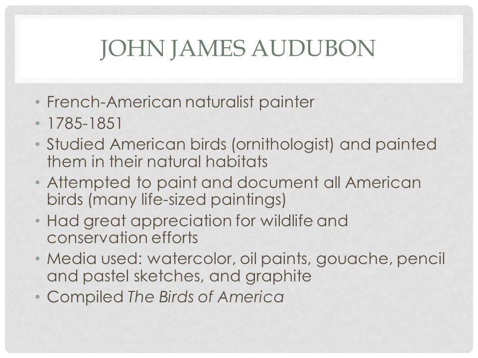 JOHN JAMES AUDUBON French-American naturalist painter 1785-1851 Studied American birds (ornithologist) and painted them in their natural habitats Attempted to paint and document all American birds (many life-sized paintings) Had great appreciation for wildlife and conservation efforts Media used: watercolor, oil paints, gouache, pencil and pastel sketches, and graphite Compiled The Birds of America